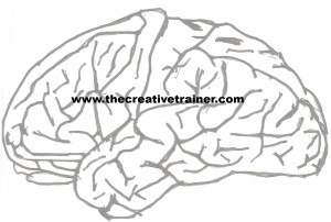 The Impact of a Brain-Based Environment on Learning by The Creative Trainer - Robert W. Lucas, Awarding Winning Creative Training Author